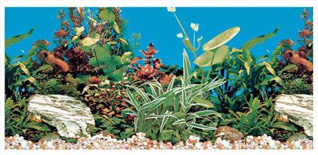 Trixie Pozadina za akvarijum, dupla, slatka voda 80 cm ( 8126 )