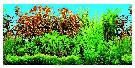 Trixie Pozadina za akvarijum,dupla,slatka voda 60 cm x 30 m ( 8125 )