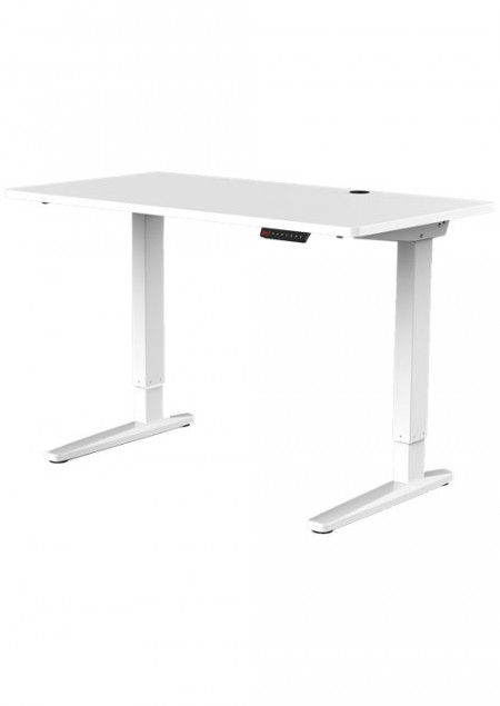 Proven E2-12 Adjustable Desk White/White ( 154398 )