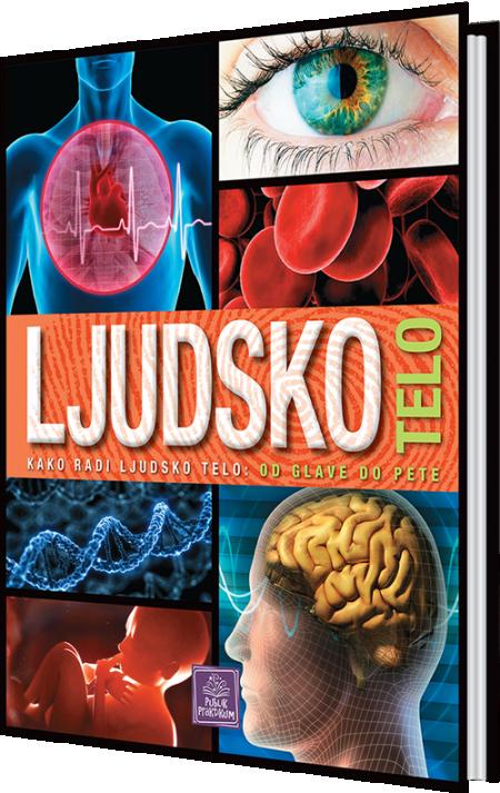 Ljudsko telo - Enciklopedija za decu ( 883 )