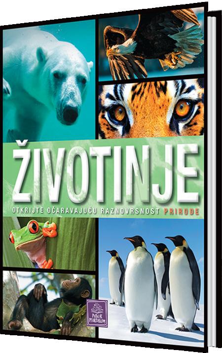 Životinje - Enciklopedija za decu ( 881 )
