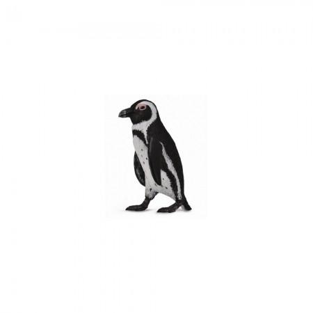 Collecta africki pingvin ( CT88710 )